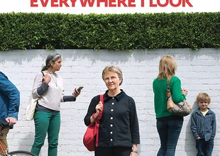 Everywhere I Look by Helen Garner: book review