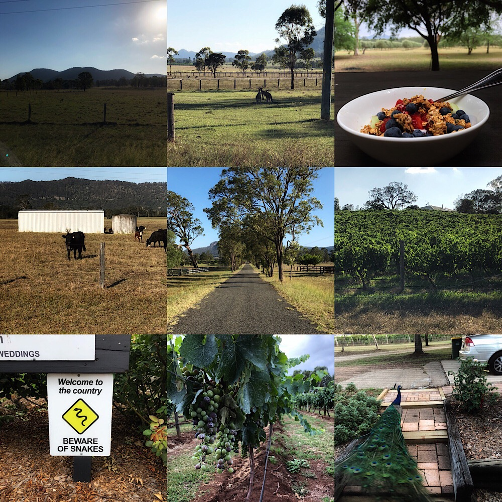 Hunter Valley Holiday