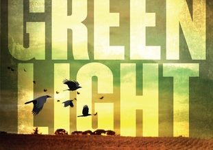 Greenlight book review