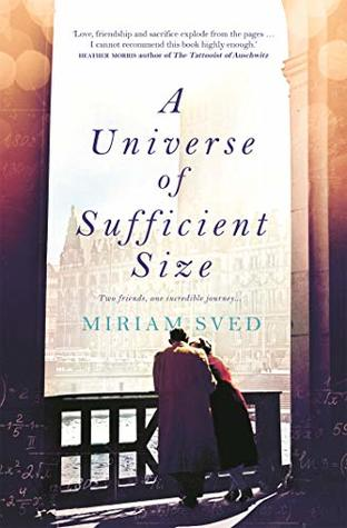 A Universe of Sufficient size book review